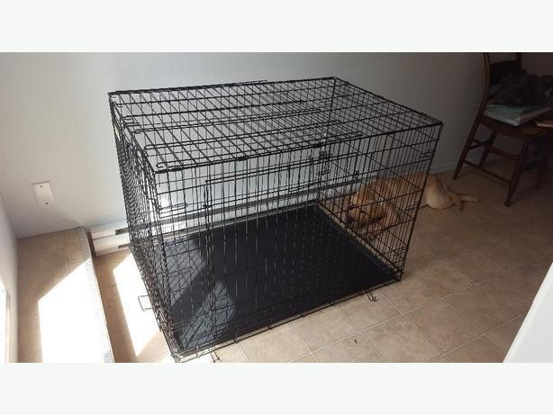 Top Paw Double Door Wire Crate Victoria City Victoria