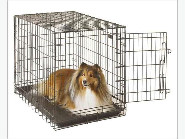 Large Dog Crate! 70x42x42 inches