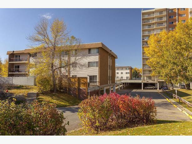 Avail. Oct  Charming  2 bedrooms Calgary Holly Acres Apartments