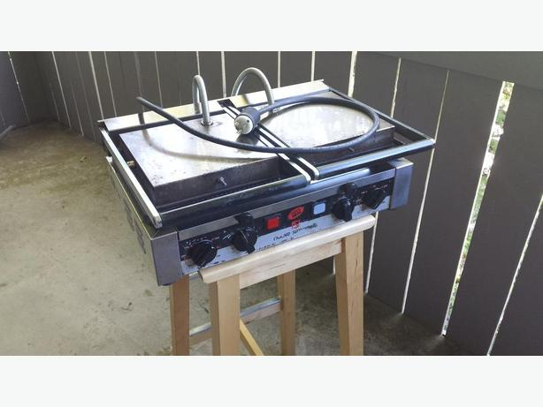 Commercial panini press