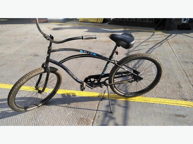 Electra brand cruiser bike