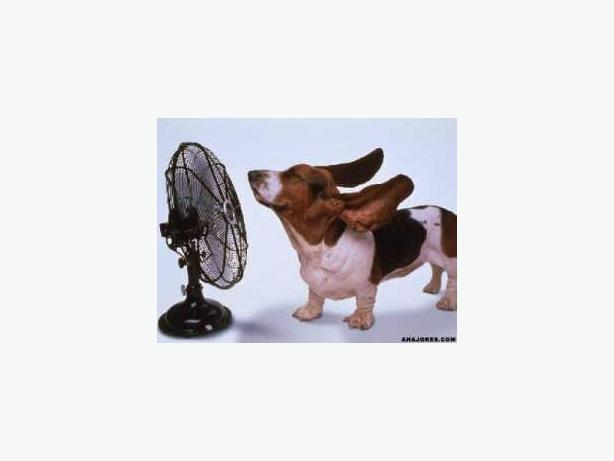 $59.99 Summer Special - Vehicle Air Conditioning Re-Charge!