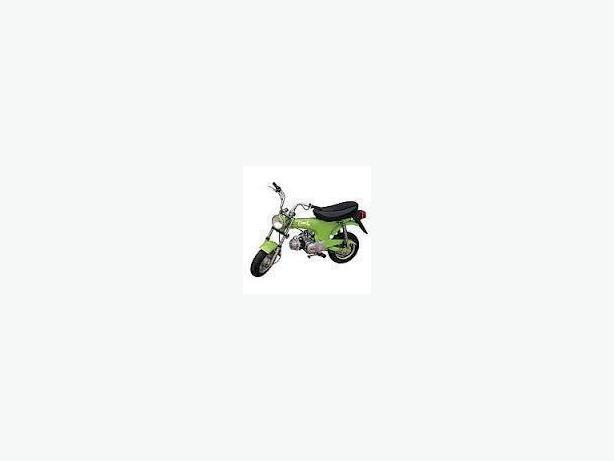 Baja Comet 90cc Mini Bike