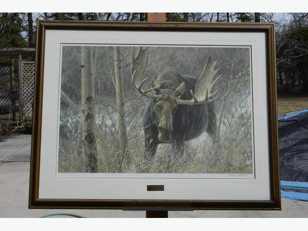 THE CHALLENGE by Robert Bateman  [Bull Moose]