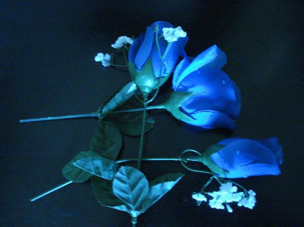 FAKE, ROYAL BLUE ROSES