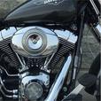 2009 Harley-Davidson® FLSTF