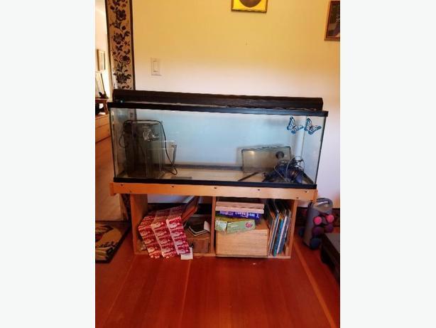 45 gal aquarium