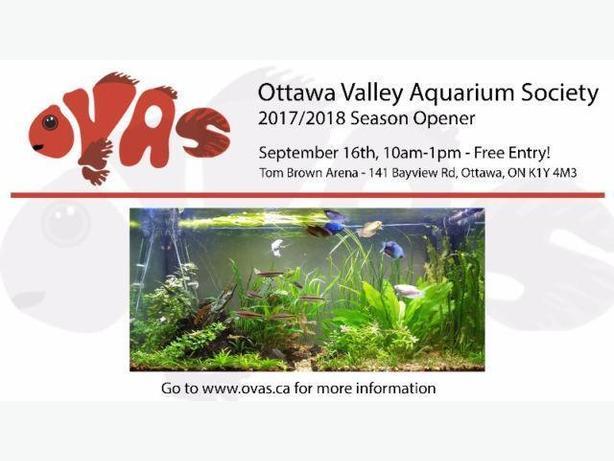 Great deals on Aquarium items