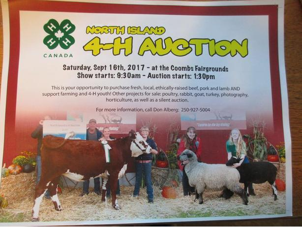 North Island 4H Auction