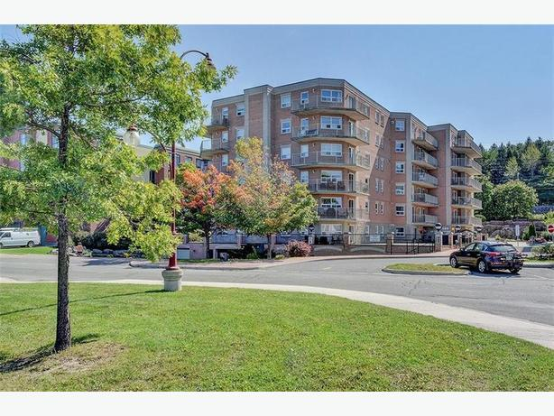 Move in Ready Condo fronting on Park Setting! Open Concept
