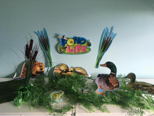 Pond Life Party Decorations