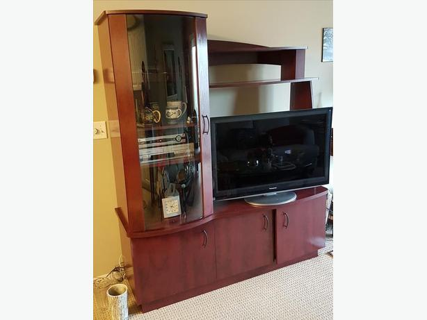 ENTERTAINMENT UNIT PRICED TO SELL