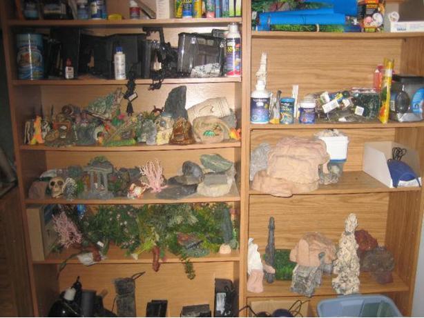 Various Aquariums and accessories