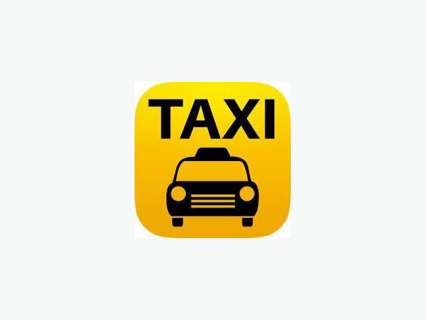Taxi Driver & Tour Operator