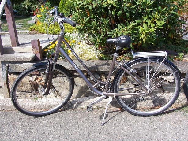 Ridden Thrice GIANT bike