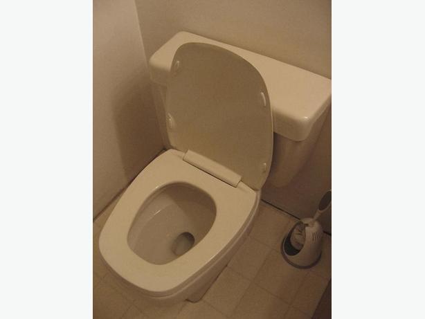 FREE: toilet