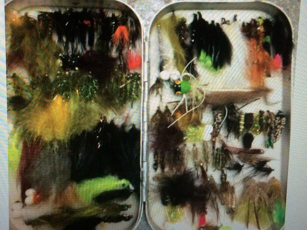 Over 400$ worth of flies and box