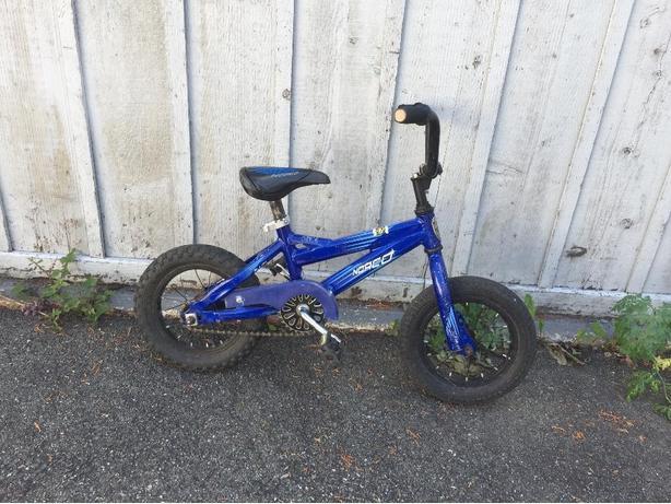 Norco 12 inch bike
