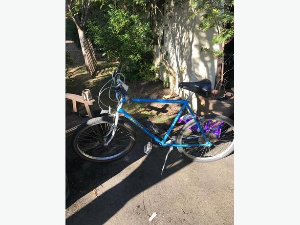 Raleigh Bike