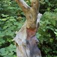 Driftwood Wood Spirit
