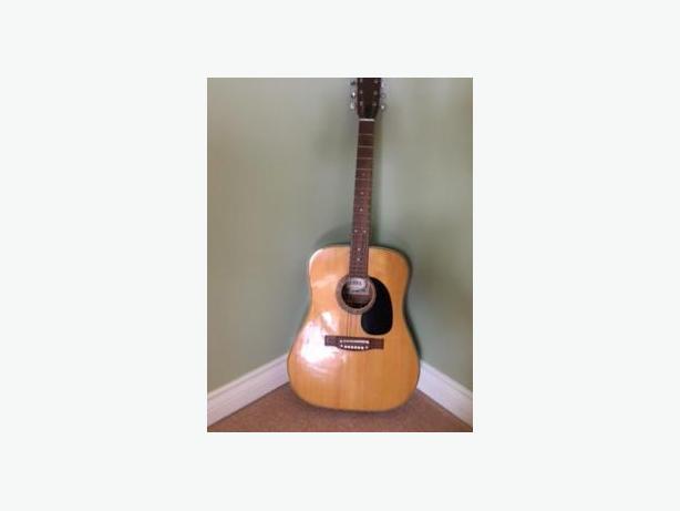 Dana Accoustic Guitar
