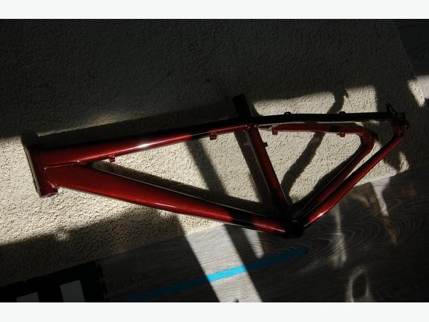 custom painted Kona Mountain bike frame