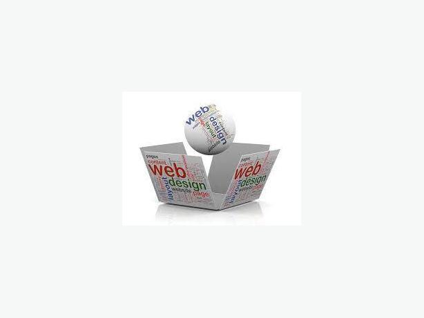 ……….Professional Website including hosting………