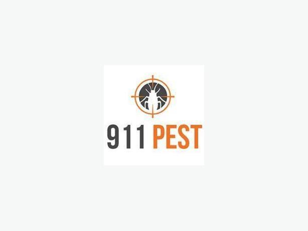 Quick Spider Removal Service Kitchener | 911 Pest