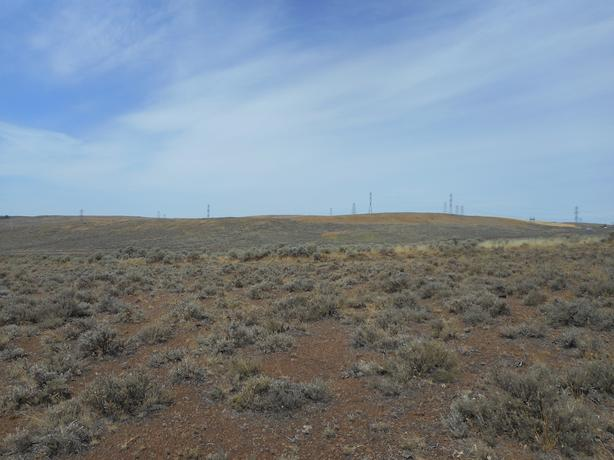 20 Acre Parcel near Coulee City WA