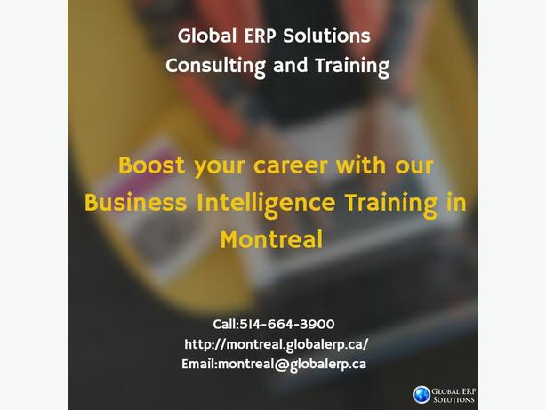 Business Intelligence (BI) Training & Project with Placements in Montreal