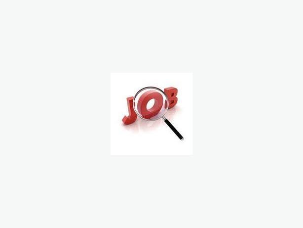 ASAP: Part Time Office Job: $20/Hr