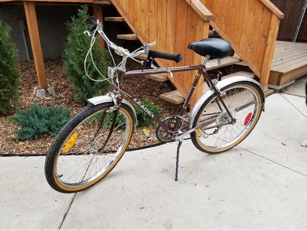 mountain bike/cruiser