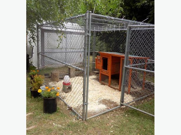 6 x 8 x10 Dog Pen/ Kennel