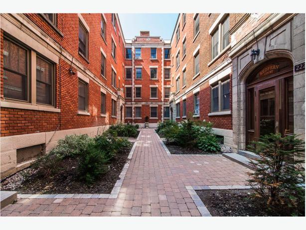 Westmount apartment- pet friendly, parks, restos, public transport!
