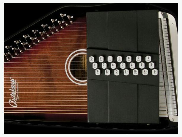ISO 21 Chord Auto Harp