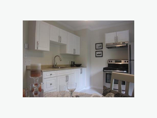 Chic Cute 1 Bedroom Apartment in the Heart of Danforth Village