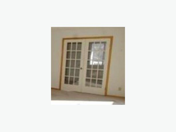 Set of 2 French doors - Exc. cond. -or use as a single door