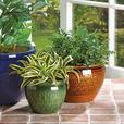 Ceramic Flower Pot Planter Set Blue/Brown/Green Mix & Metal Plant Stand 4PC New