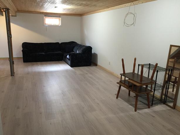 Large basement suite near University