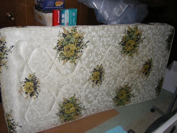 FREE: Twin size mattress