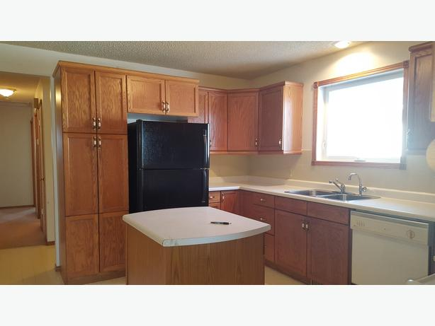 Great House with Professional Basement Development Plus Double Garage