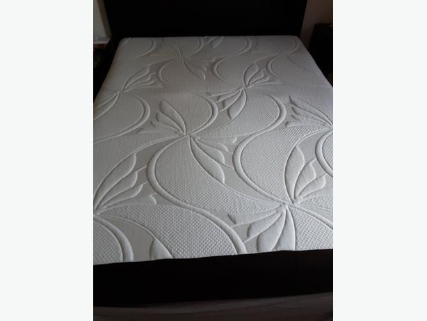 Simmons queen mattress