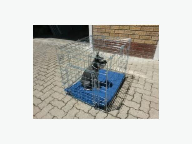 A MEDIUM WIRE DOG CRATE FOR SALE - IRON BRIDGE