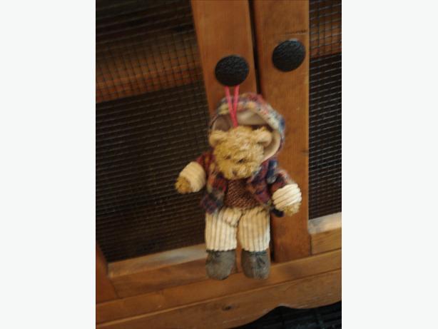 Boyde Bear Door Knob hanger