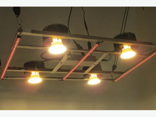 High-Tech Grow Light For Sale