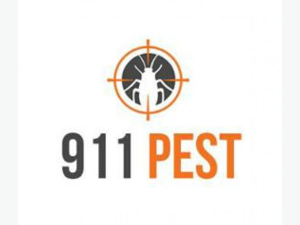Quick Mice and Rat Control Kitchener | 911 Pest