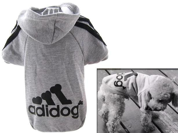 Small jacket for dog