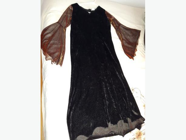 black velour witch dress costume  has orange ish sleeves  web design