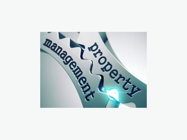 offering: real estate property management service