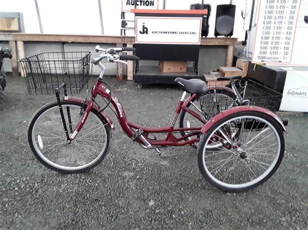 Schwinn 3-Wheeled Bike